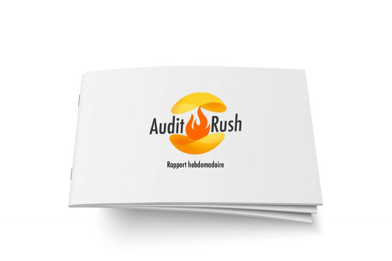 Audit Rush