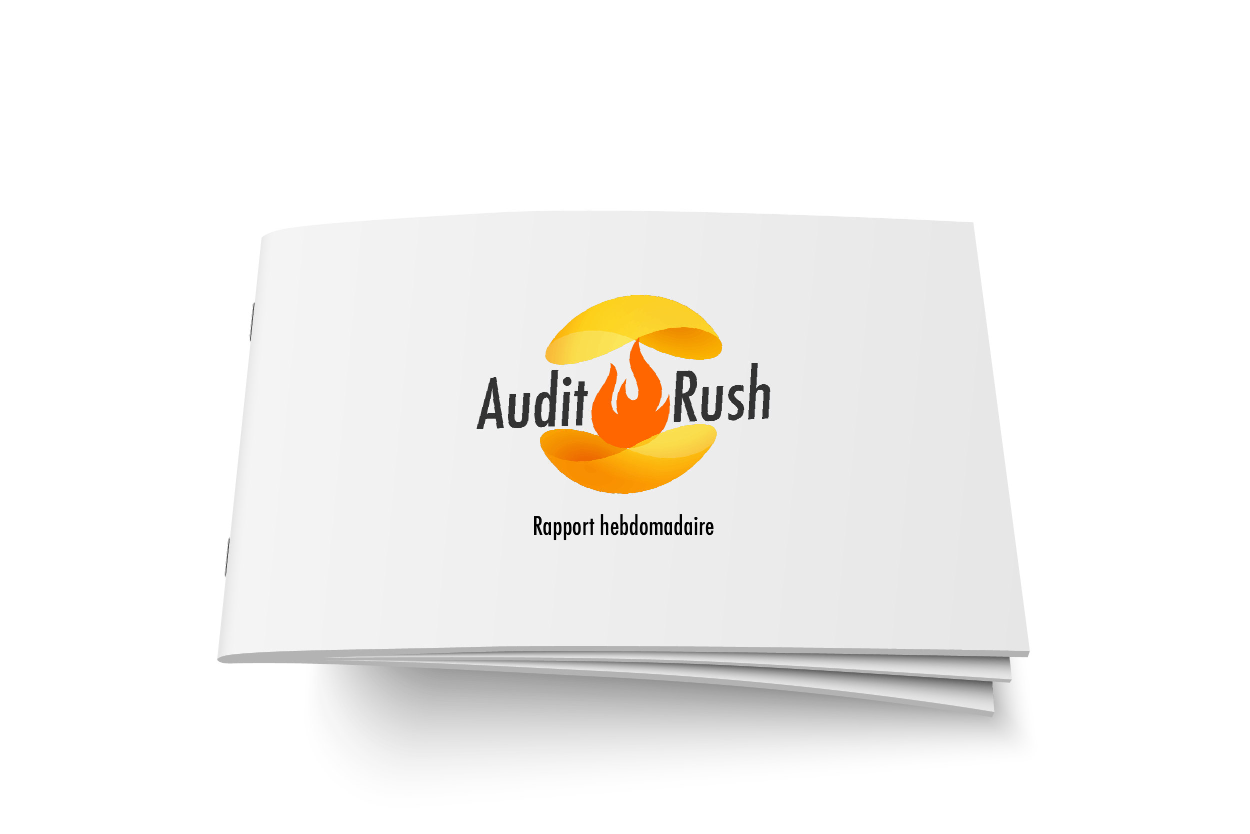 Audit Rush